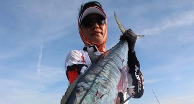 BB系列铁板渔获(马来西亚钓场)