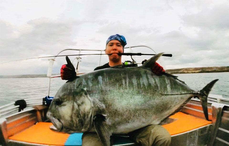 Transformer轻型铁板竿60S-XUL渔获,牛港鲹(印尼钓场)