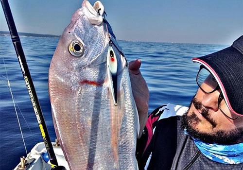 R系列慢摇鼓轮R25+铁板竿Transformer 60XUL渔获,海鲷(法国钓场)
