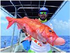 R系列R90海钓鼓轮渔获,红宝石(马尔代夫钓场)